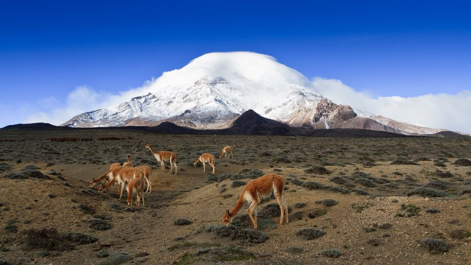 Chimborazo - Paisaje