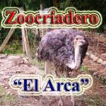ZOOLÓGICO EL ARCA